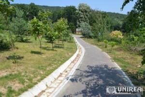 Parcul dendrologic Dr. Ioan Vlad din zona Valea Popii din Alba Iulia 41