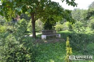 Parcul dendrologic Dr. Ioan Vlad din zona Valea Popii din Alba Iulia 55