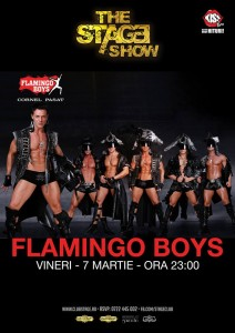 Flamingo Boys