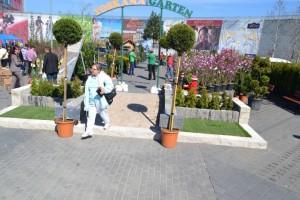Targul Gradinarului la Alba Mall046