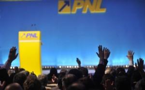 PNL-europarlamentare