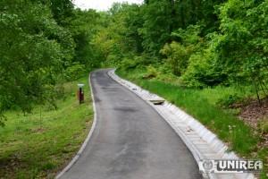 Parcul Dendrologic din Alba Iulia27