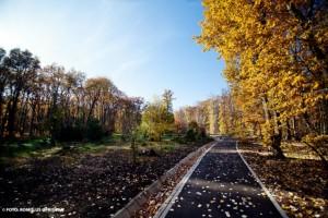 Parcul Dendrologic din Alba Iulia03