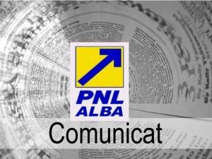 comunicat pnl