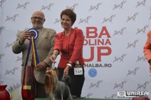 Alba Carolina Cup Alba Iulia (93)