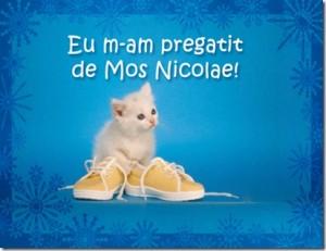Mos Nicolae3