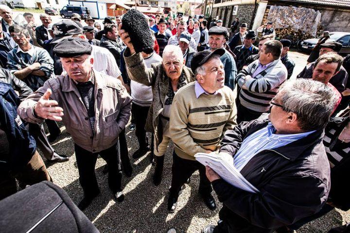 protest Zlatna pagube mistreti si lupi6
