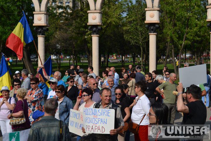 Protest Alba IUlia_taieri ilegale paduri (119)