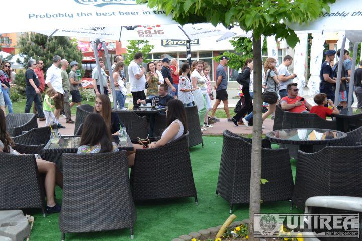 Protest Alba IUlia_taieri ilegale paduri (85)